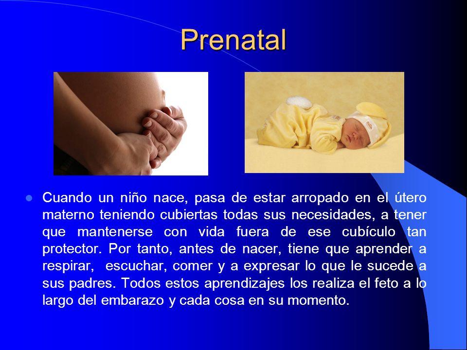 Prenatal Cuando un niño nace, pasa de estar arropado en el útero materno teniendo cubiertas todas sus necesidades, a tener que mantenerse con vida fue