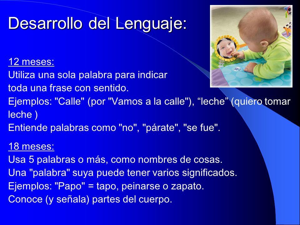 Desarrollo del Lenguaje: 12 meses: Utiliza una sola palabra para indicar toda una frase con sentido. Ejemplos: