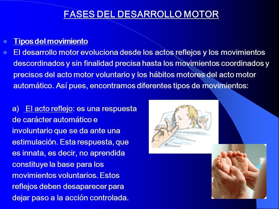 FASES DEL DESARROLLO MOTOR Tipos del movimiento El desarrollo motor evoluciona desde los actos reflejos y los movimientos descordinados y sin finalida