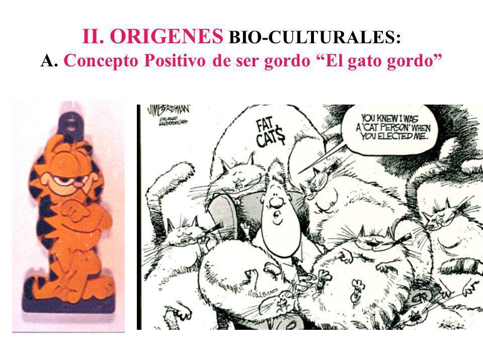II. ORIGENES BIO-CULTURALES: A. Concepto Positivo de ser gordo El gato gordo