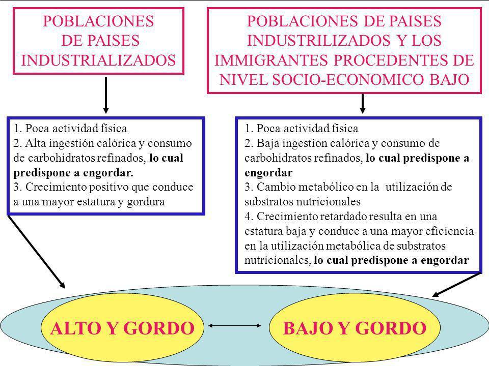 POBLACIONES DE PAISES INDUSTRILIZADOS Y LOS IMMIGRANTES PROCEDENTES DE NIVEL SOCIO-ECONOMICO BAJO POBLACIONES DE PAISES INDUSTRIALIZADOS 1.