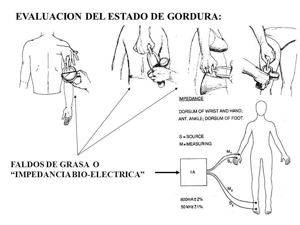 FALDOS DE GRASA O IMPEDANCIA BIO-ELECTRICA EVALUACION DEL ESTADO DE GORDURA: