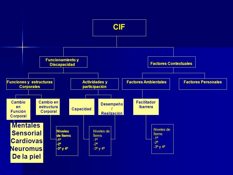 CIF Funciones y estructuras Corporales Funcionamiento y Discapacidad Actividades y participación Factores Contextuales Factores AmbientalesFactores Personales Cambio en Función Corporal Cambio en estructura Corporal Mentales Sensorial Cardiovas Neuromus De la piel Capacidad Desempeño / Realización Facilitador /barrera Niveles de Ítems -1º -2º -3º y 4º Niveles de Ítems -1º -2º -3º y 4º Niveles de Ítems -1º -2º -3º y 4º