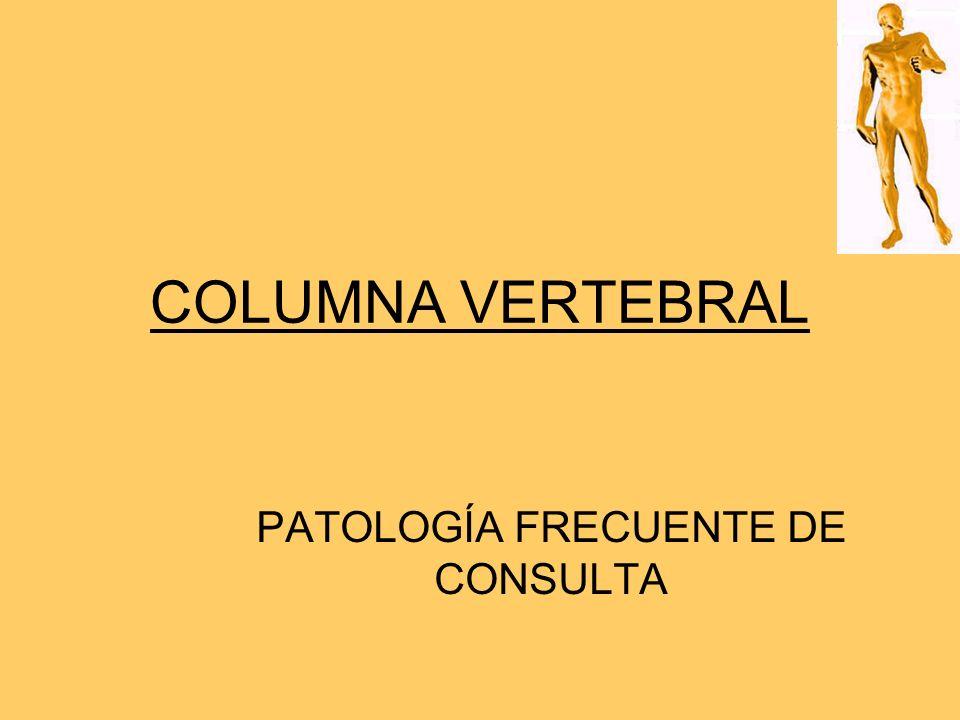 COLUMNA VERTEBRAL PATOLOGÍA FRECUENTE DE CONSULTA
