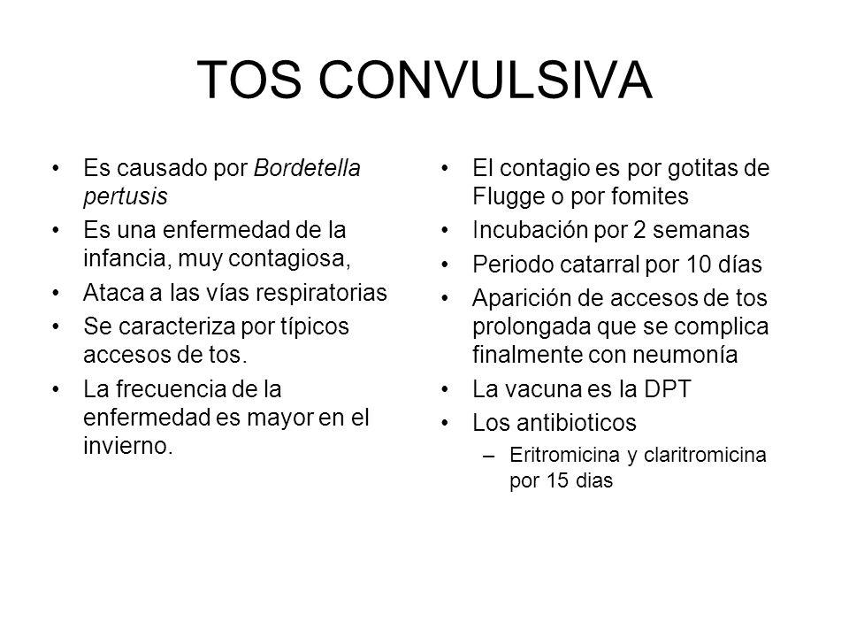 TOS CONVULSIVA Es causado por Bordetella pertusis Es una enfermedad de la infancia, muy contagiosa, Ataca a las vías respiratorias Se caracteriza por típicos accesos de tos.