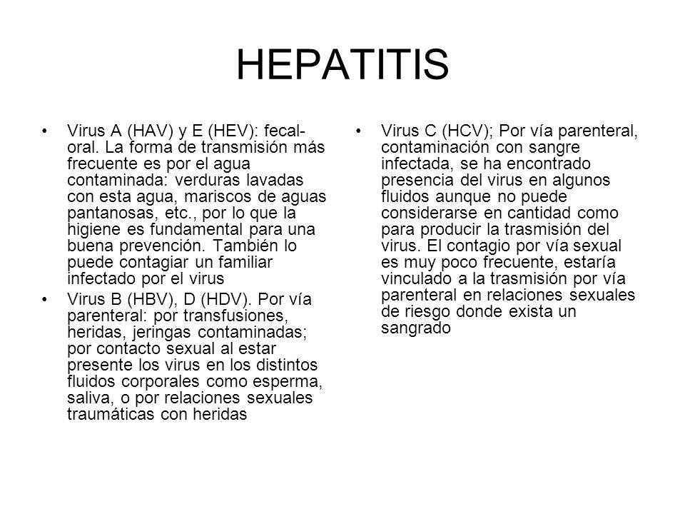HEPATITIS Virus A (HAV) y E (HEV): fecal- oral. La forma de transmisión más frecuente es por el agua contaminada: verduras lavadas con esta agua, mari