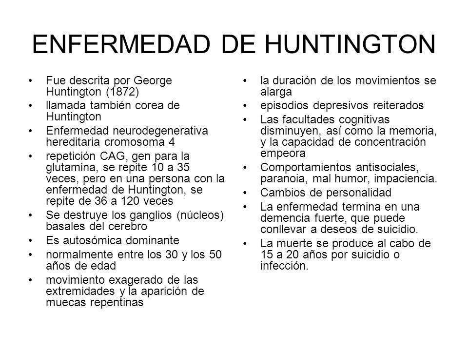 ENFERMEDAD DE HUNTINGTON Fue descrita por George Huntington (1872) llamada también corea de Huntington Enfermedad neurodegenerativa hereditaria cromosoma 4 repetición CAG, gen para la glutamina, se repite 10 a 35 veces, pero en una persona con la enfermedad de Huntington, se repite de 36 a 120 veces Se destruye los ganglios (núcleos) basales del cerebro Es autosómica dominante normalmente entre los 30 y los 50 años de edad movimiento exagerado de las extremidades y la aparición de muecas repentinas la duración de los movimientos se alarga episodios depresivos reiterados Las facultades cognitivas disminuyen, así como la memoria, y la capacidad de concentración empeora Comportamientos antisociales, paranoia, mal humor, impaciencia.