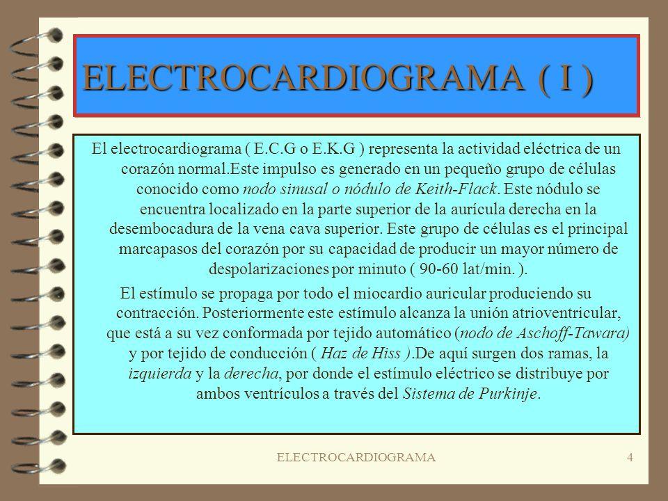 ELECTROCARDIOGRAMA3 CIRCULACIÓN DE LA SANGRE ( III ) LA PRESIÓN EN LA CIRCULACIÓN MENOR ES INFERIOR A LA DE LA CIRCULACIÓN MAYOR, POR ESO EL MIOCARDIO