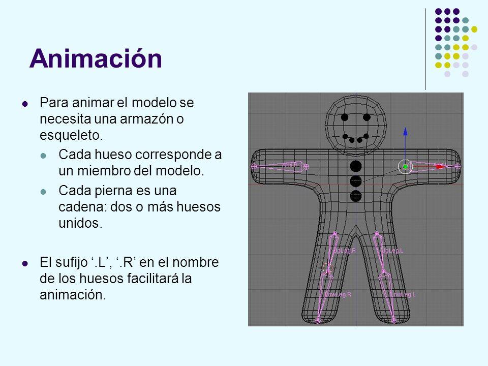 Animación Para animar el modelo se necesita una armazón o esqueleto. Cada hueso corresponde a un miembro del modelo. Cada pierna es una cadena: dos o