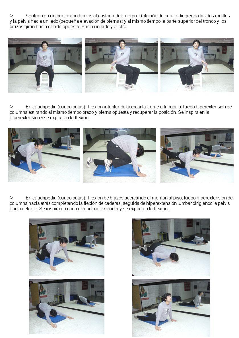 Sentado en un banco con brazos al costado del cuerpo. Rotación de tronco dirigiendo las dos rodillas y la pelvis hacia un lado (pequeña elevación de p
