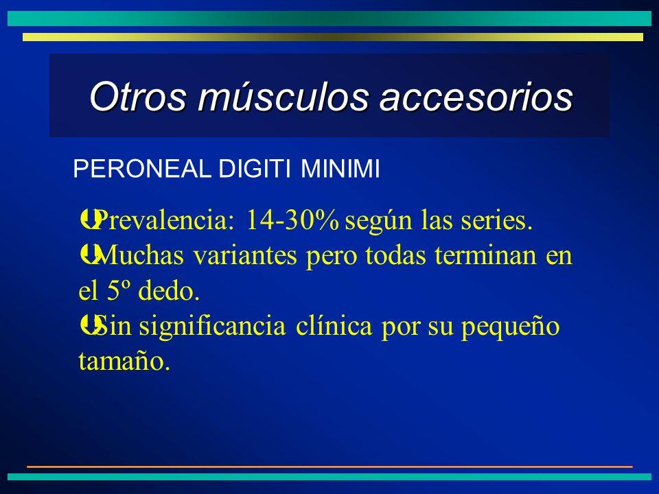 Otros músculos accesorios ÞPrevalencia: 14-30% según las series. ÞMuchas variantes pero todas terminan en el 5º dedo. ÞSin significancia clínica por s