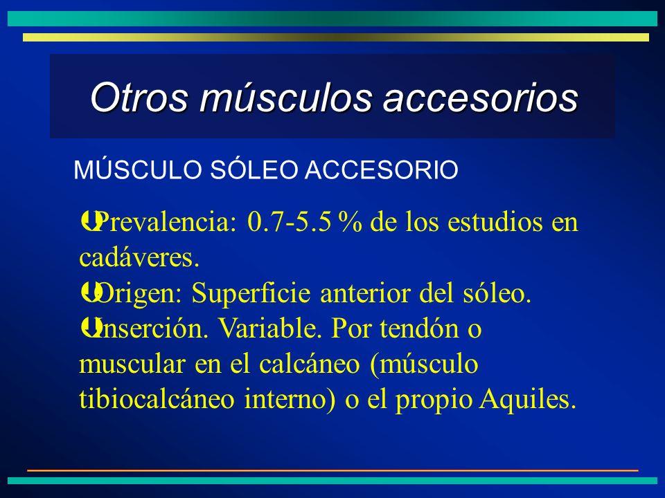 Otros músculos accesorios ÞPrevalencia: 0.7-5.5 % de los estudios en cadáveres. ÞOrigen: Superficie anterior del sóleo. ÞInserción. Variable. Por tend