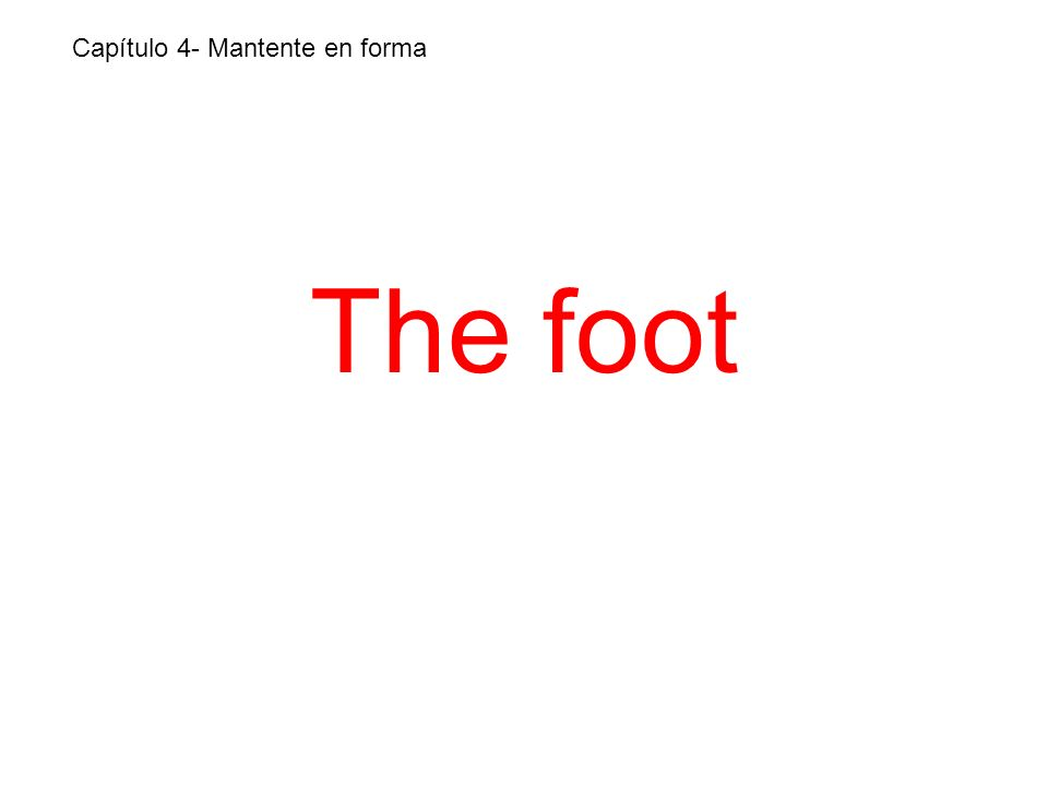 The foot Capítulo 4- Mantente en forma