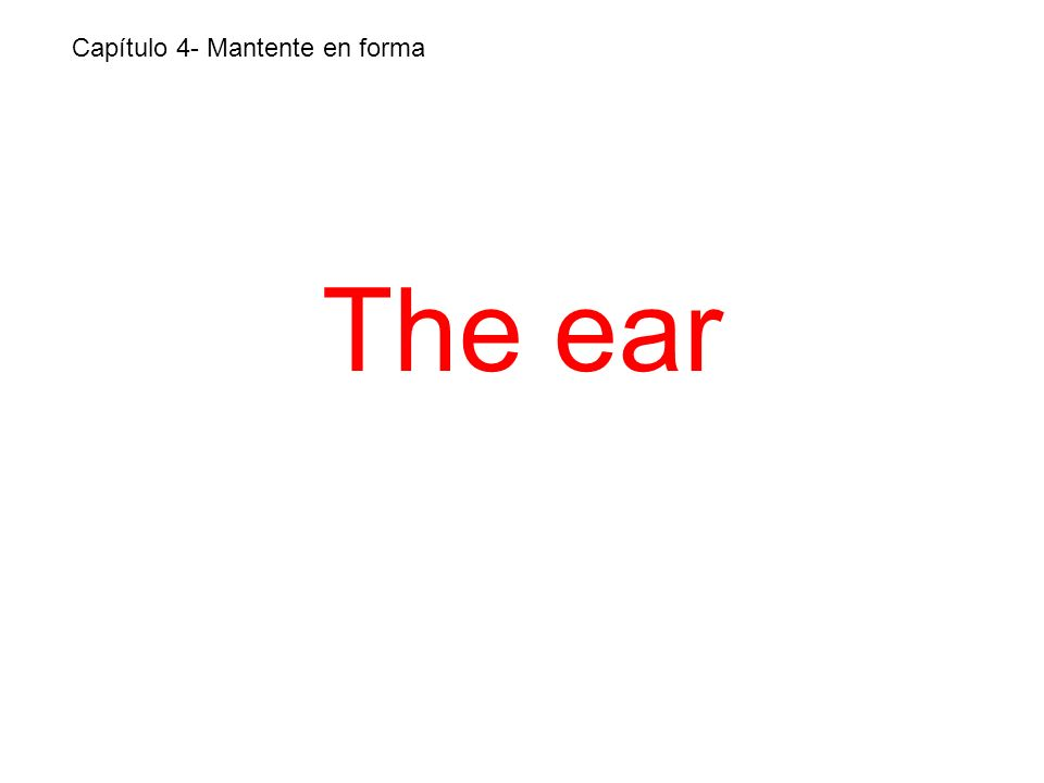 The ear Capítulo 4- Mantente en forma