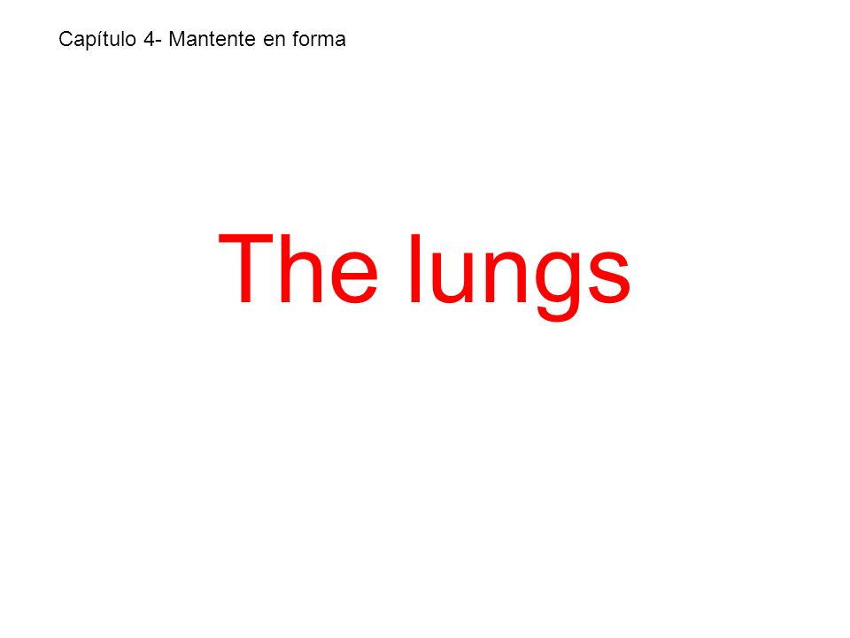 The lungs Capítulo 4- Mantente en forma