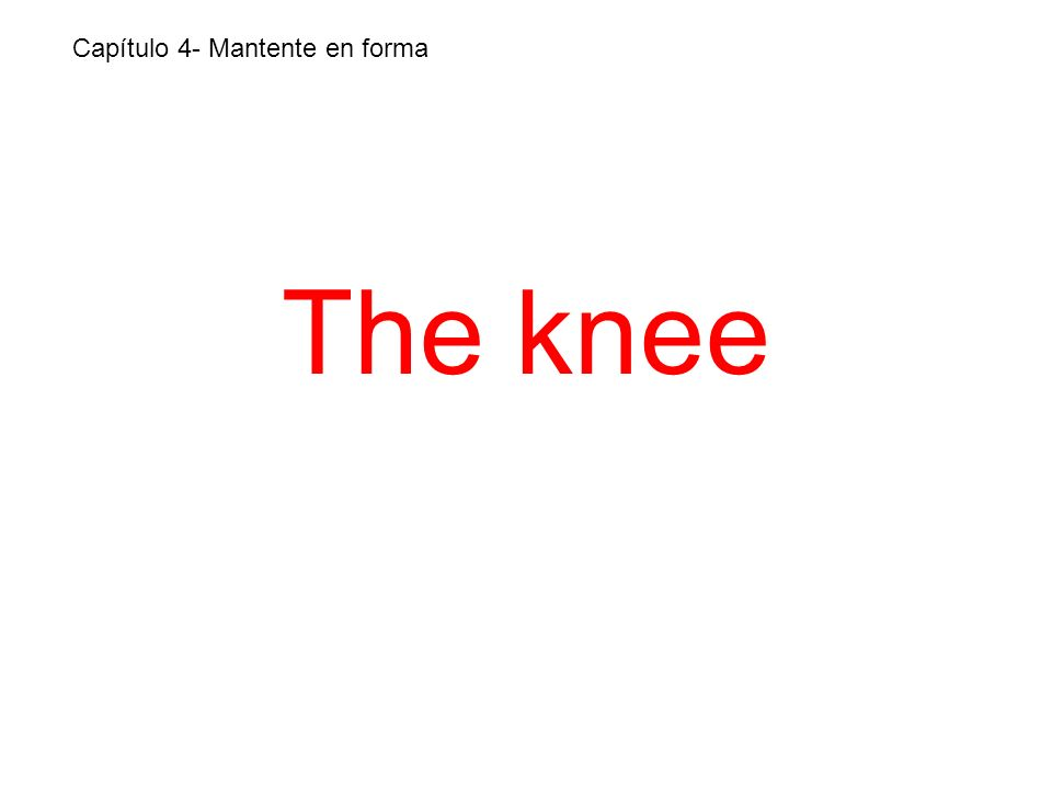 The knee Capítulo 4- Mantente en forma