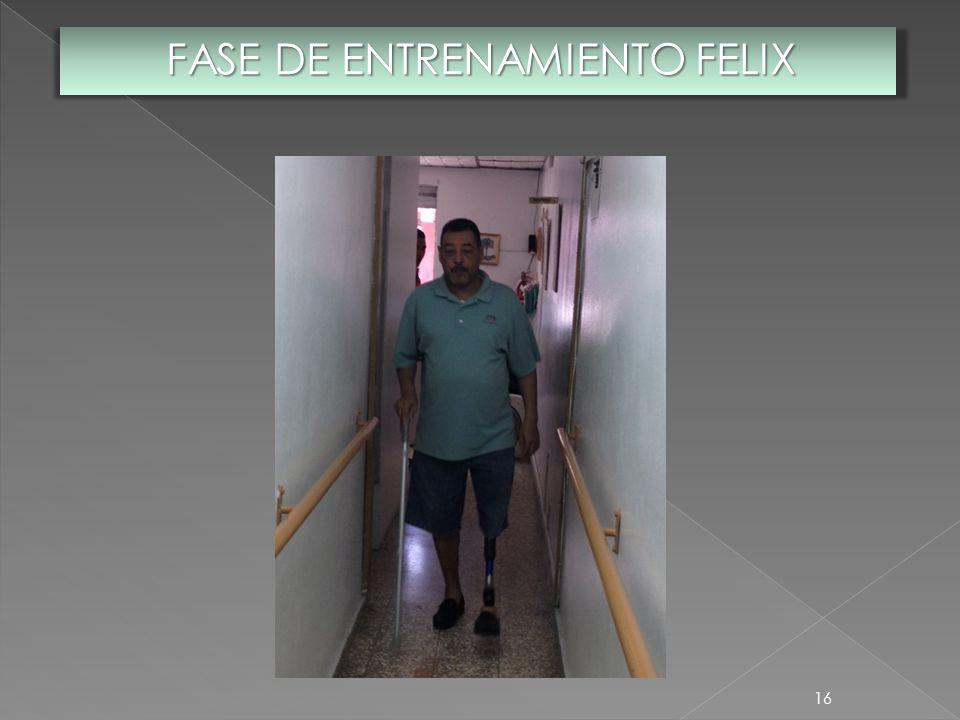 16 FASE DE ENTRENAMIENTO FELIX
