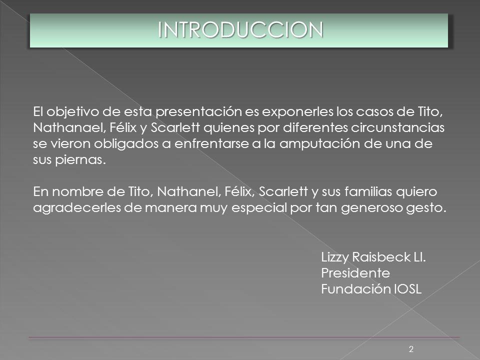 2 INTRODUCCION El objetivo de esta presentación es exponerles los casos de Tito, Nathanael, Félix y Scarlett quienes por diferentes circunstancias se