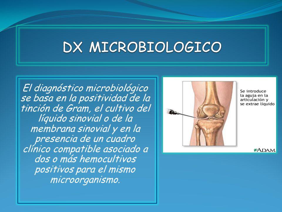 El diagnóstico microbiológico se basa en la positividad de la tinción de Gram, el cultivo del líquido sinovial o de la membrana sinovial y en la prese