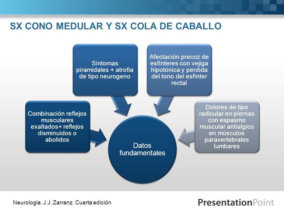 SX CONO MEDULAR Y SX COLA DE CABALLO Datos fundamentales Combinación reflejos musculares exaltados+ reflejos disminuidos o abolidos Síntomas piramidal