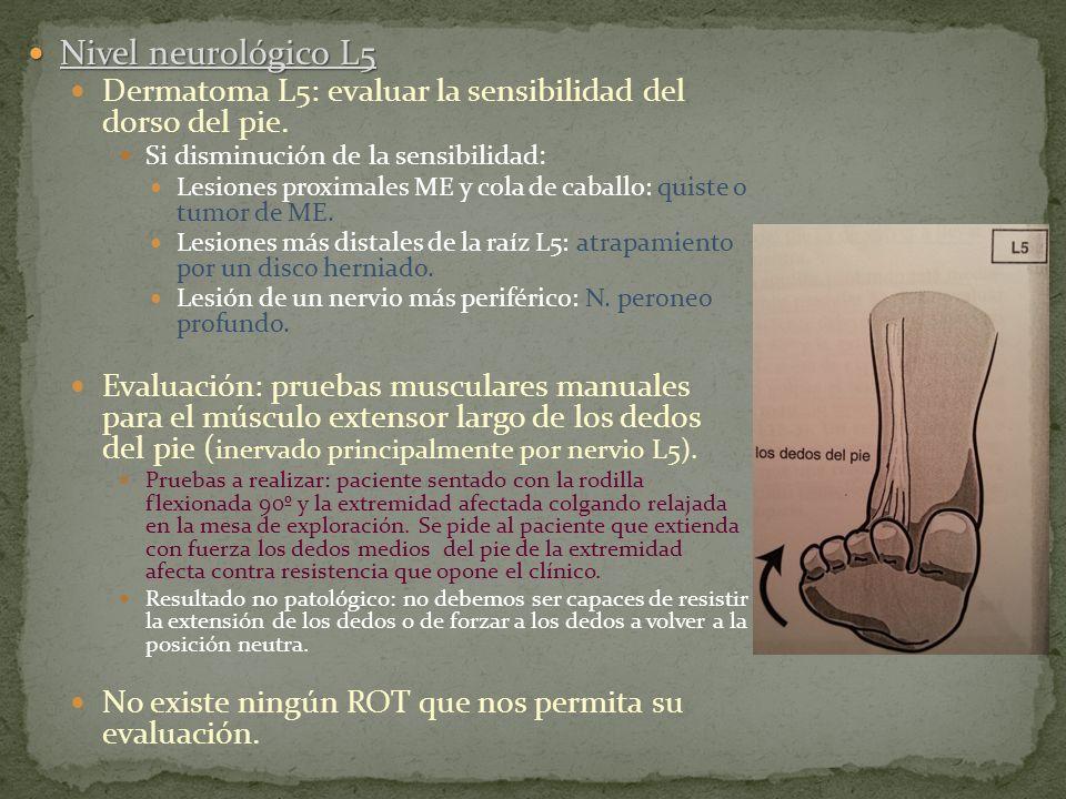 Nivel neurológico L5 Nivel neurológico L5 Dermatoma L5: evaluar la sensibilidad del dorso del pie. Si disminución de la sensibilidad: Lesiones proxima