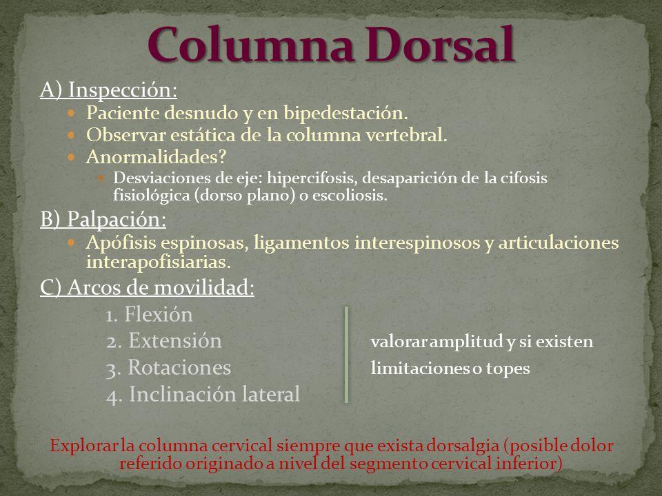 A) Inspección: Paciente desnudo y en bipedestación. Observar estática de la columna vertebral. Anormalidades? Desviaciones de eje: hipercifosis, desap