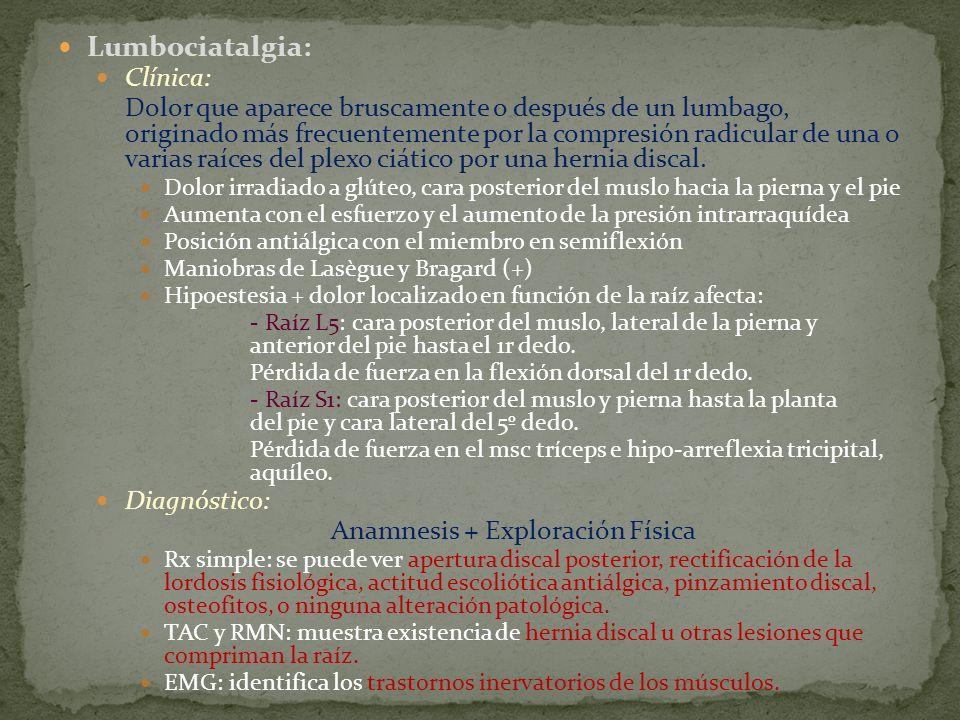 Lumbociatalgia: Clínica: Dolor que aparece bruscamente o después de un lumbago, originado más frecuentemente por la compresión radicular de una o vari