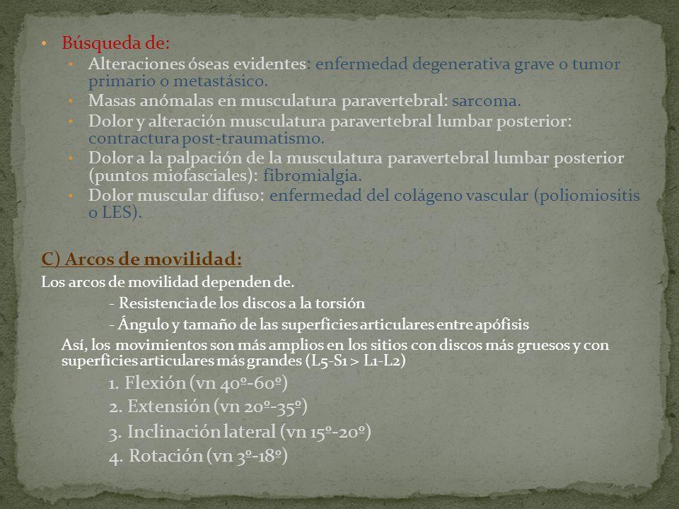Búsqueda de: Alteraciones óseas evidentes: enfermedad degenerativa grave o tumor primario o metastásico. Masas anómalas en musculatura paravertebral:
