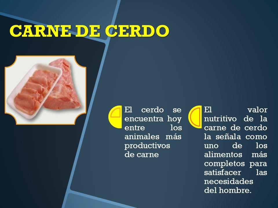 CARNE DE CERDO El cerdo se encuentra hoy entre los animales más productivos de carne El valor nutritivo de la carne de cerdo la señala como uno de los alimentos más completos para satisfacer las necesidades del hombre.