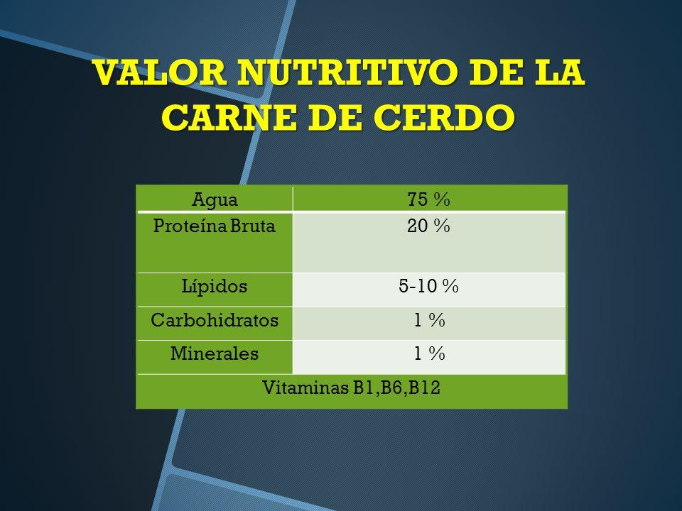VALOR NUTRITIVO DE LA CARNE DE CERDO Agua75 % Proteína Bruta20 % Lípidos5-10 % Carbohidratos1 % Minerales1 % Vitaminas B1,B6,B12