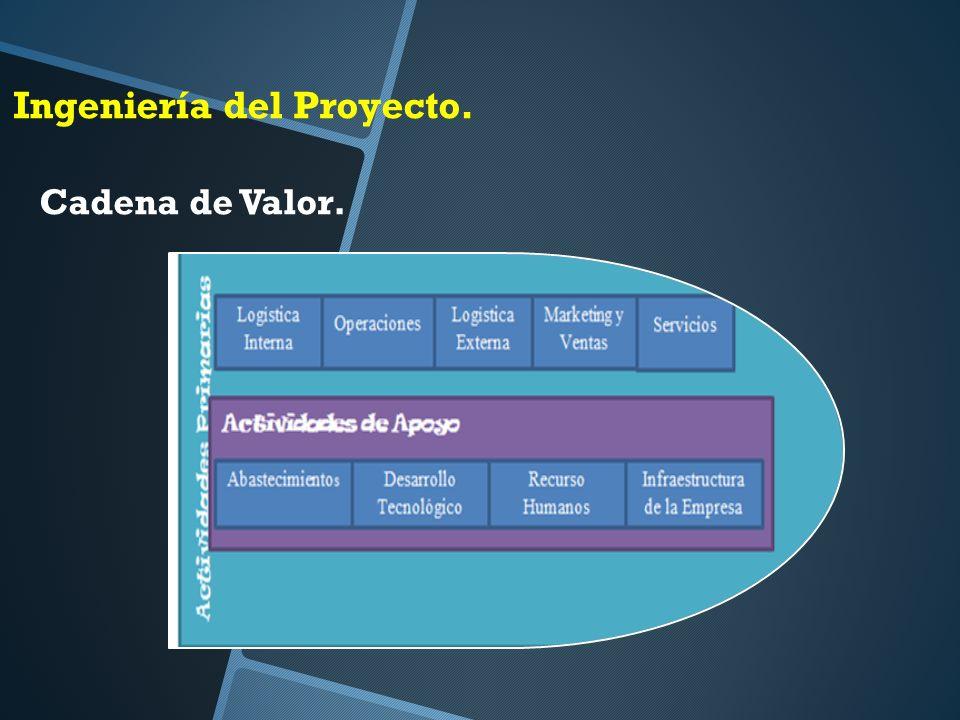 Ingeniería del Proyecto. Cadena de Valor.