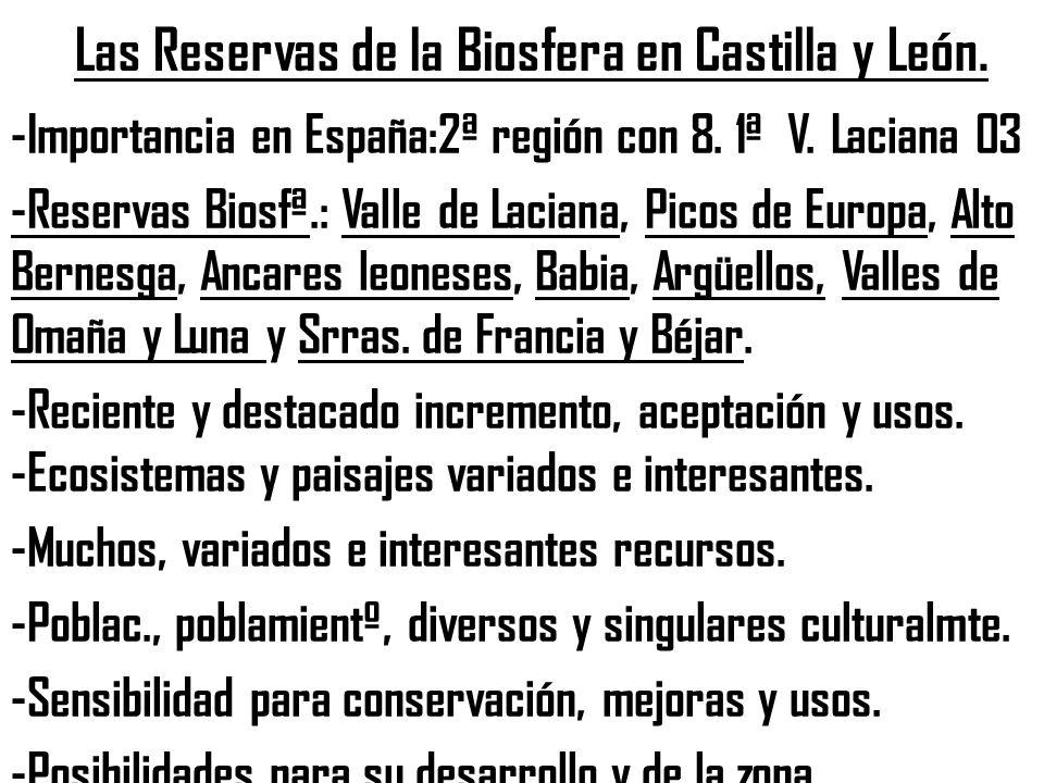 Las Reservas de la Biosfera en Castilla y León. -Importancia en España:2ª región con 8. 1ª V. Laciana 03 -Reservas Biosfª.: Valle de Laciana, Picos de