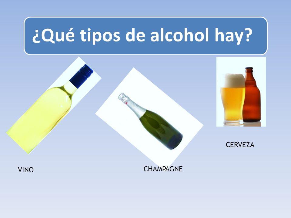 ¿Qué tipos de alcohol hay? VINO CERVEZA CHAMPAGNE