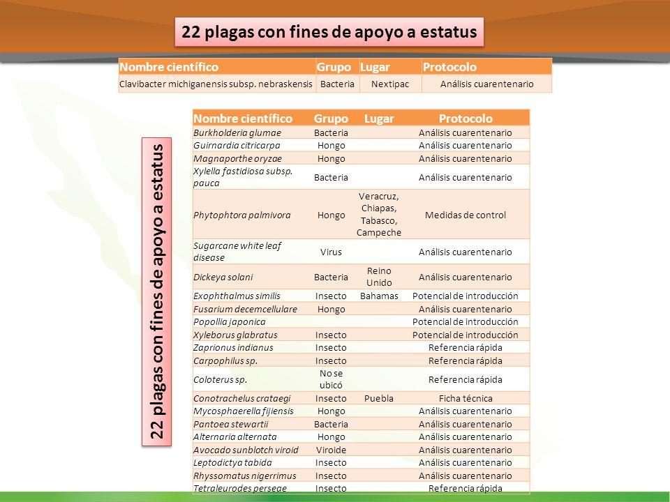 22 plagas con fines de apoyo a estatus Nombre científicoGrupoLugarProtocolo Burkholderia glumaeBacteriaAnálisis cuarentenario Guirnardia citricarpaHon