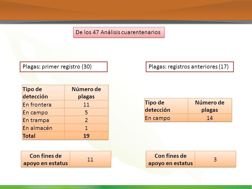 De los 47 Análisis cuarentenarios Plagas: primer registro (30)Plagas: registros anteriores (17)