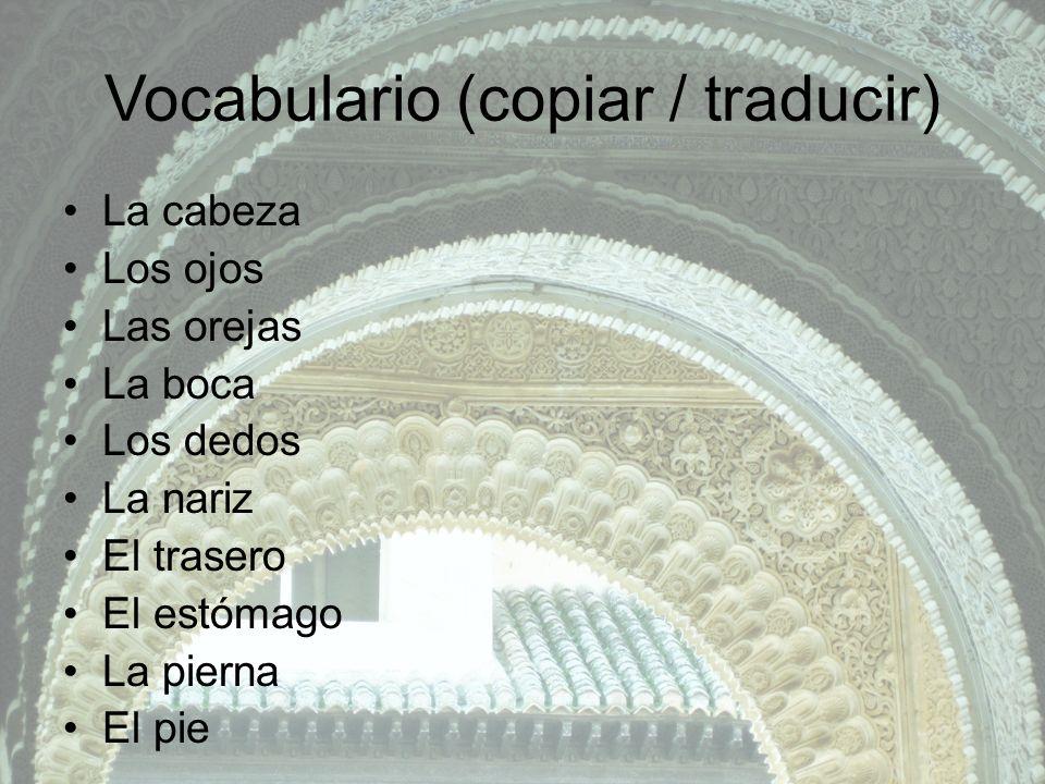 Vocabulario (copiar / traducir) La cabeza Los ojos Las orejas La boca Los dedos La nariz El trasero El estómago La pierna El pie