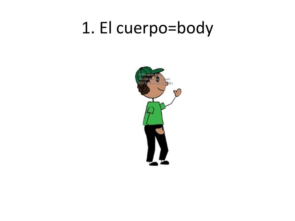 1. El cuerpo=body