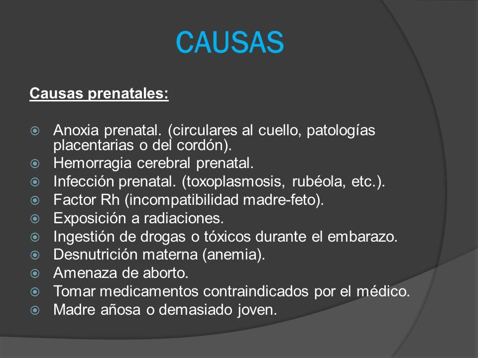 Causas perinatales.Son las más conocidas y de mayor incidencia, afecta al 90 % de los casos.