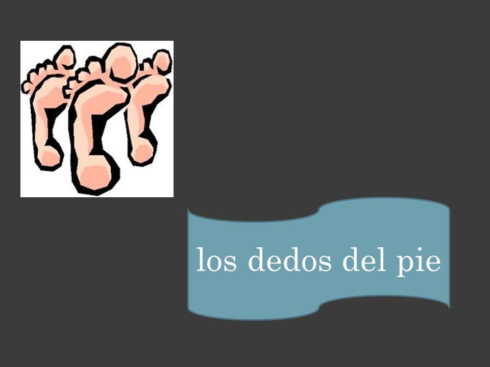 los dedos del pie