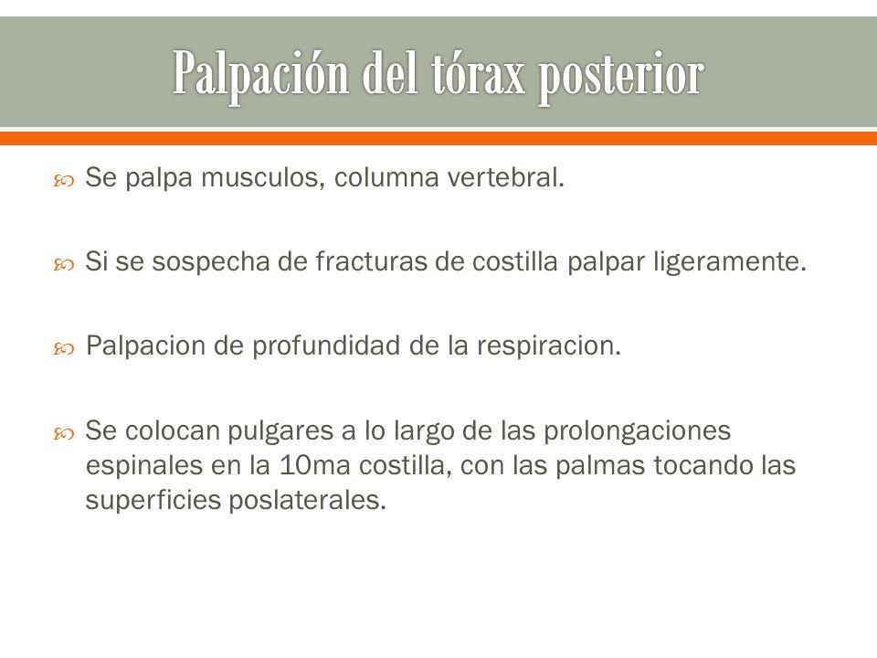 Pulgares separados 5 cms apuntando a la columna vertebral Demás dedos apuntando lateralmente.