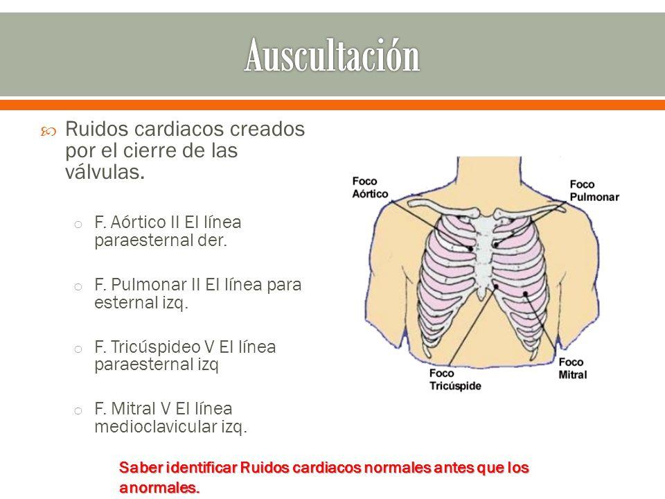 Ruidos cardiacos creados por el cierre de las válvulas. o F. Aórtico II EI línea paraesternal der. o F. Pulmonar II EI línea para esternal izq. o F. T