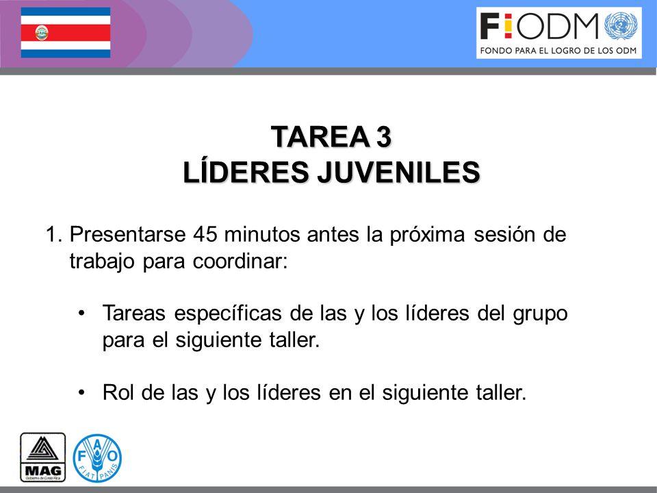 1.Presentarse 45 minutos antes la próxima sesión de trabajo para coordinar: Tareas específicas de las y los líderes del grupo para el siguiente taller
