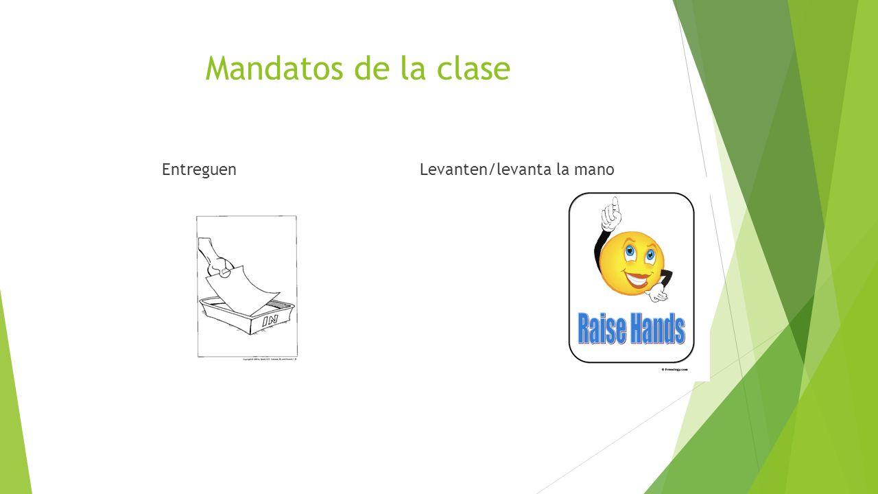 Mandatos de la clase EntreguenLevanten/levanta la mano
