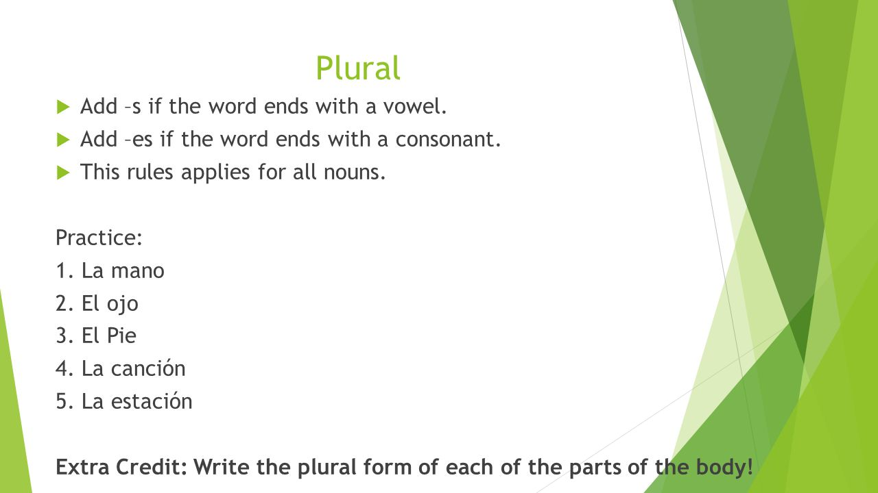Plural Add –s if the word ends with a vowel. Add –es if the word ends with a consonant.