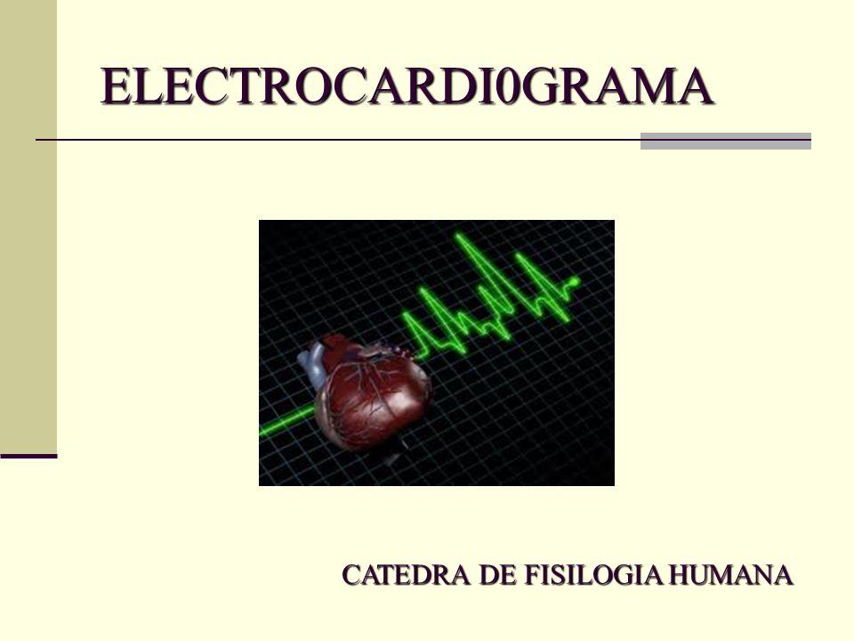 ELECTROCARDI0GRAMA CATEDRA DE FISILOGIA HUMANA