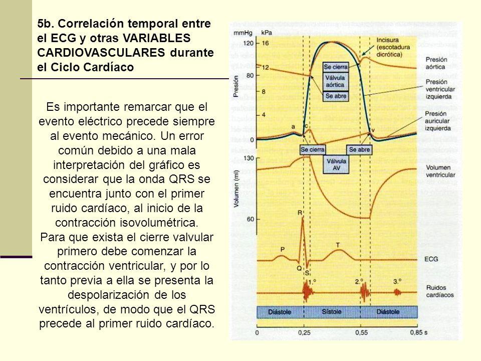 5b. Correlación temporal entre el ECG y otras VARIABLES CARDIOVASCULARES durante el Ciclo Cardíaco Es importante remarcar que el evento eléctrico prec