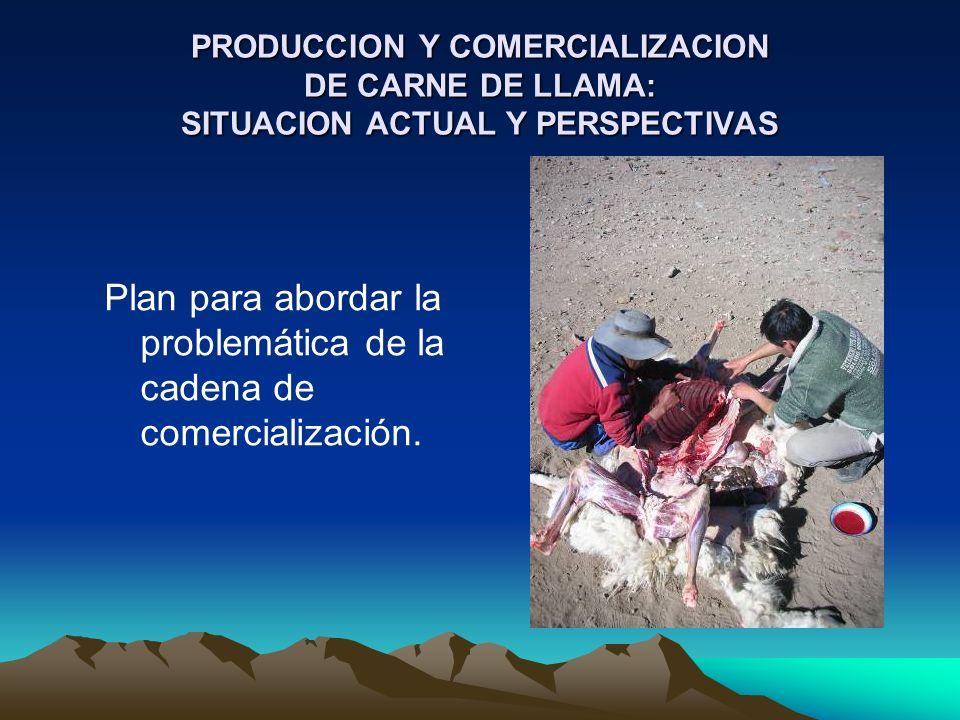 PRODUCCION Y COMERCIALIZACION DE CARNE DE LLAMA: SITUACION ACTUAL Y PERSPECTIVAS Plan para abordar la problemática de la cadena de comercialización.