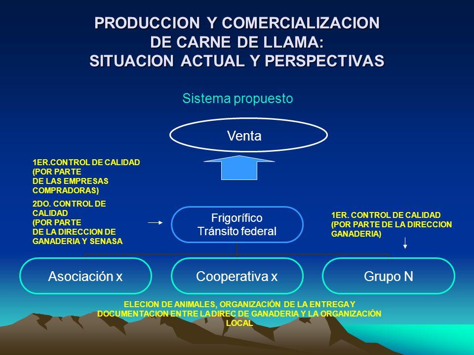 PRODUCCION Y COMERCIALIZACION DE CARNE DE LLAMA: SITUACION ACTUAL Y PERSPECTIVAS Frigorífico Tránsito federal Asociación xCooperativa xGrupo N Venta 1