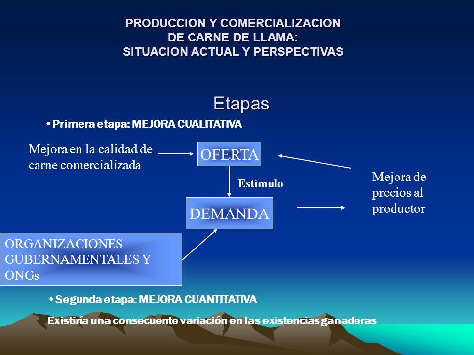 Etapas Primera etapa: MEJORA CUALITATIVA OFERTA Mejora en la calidad de carne comercializada Estímulo DEMANDA Mejora de precios al productor ORGANIZAC