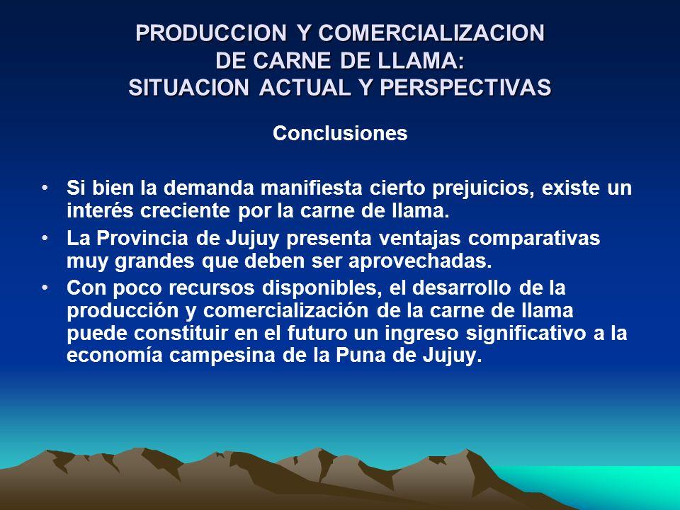 Conclusiones Si bien la demanda manifiesta cierto prejuicios, existe un interés creciente por la carne de llama. La Provincia de Jujuy presenta ventaj